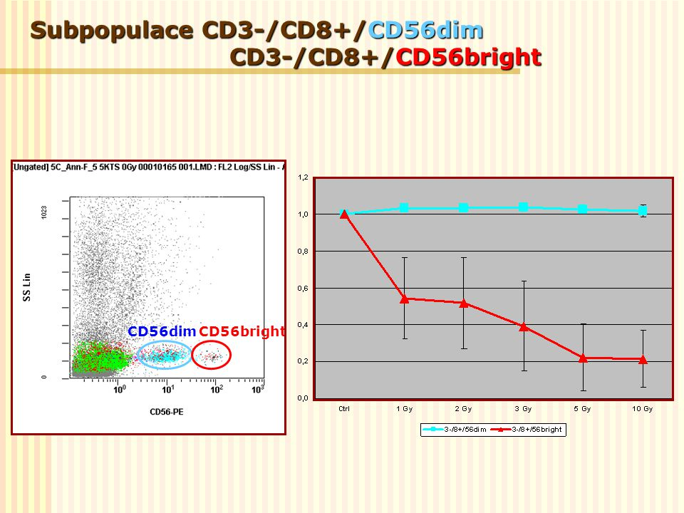 Subpopulace CD3-/CD8+/CD56dim CD3-/CD8+/CD56bright