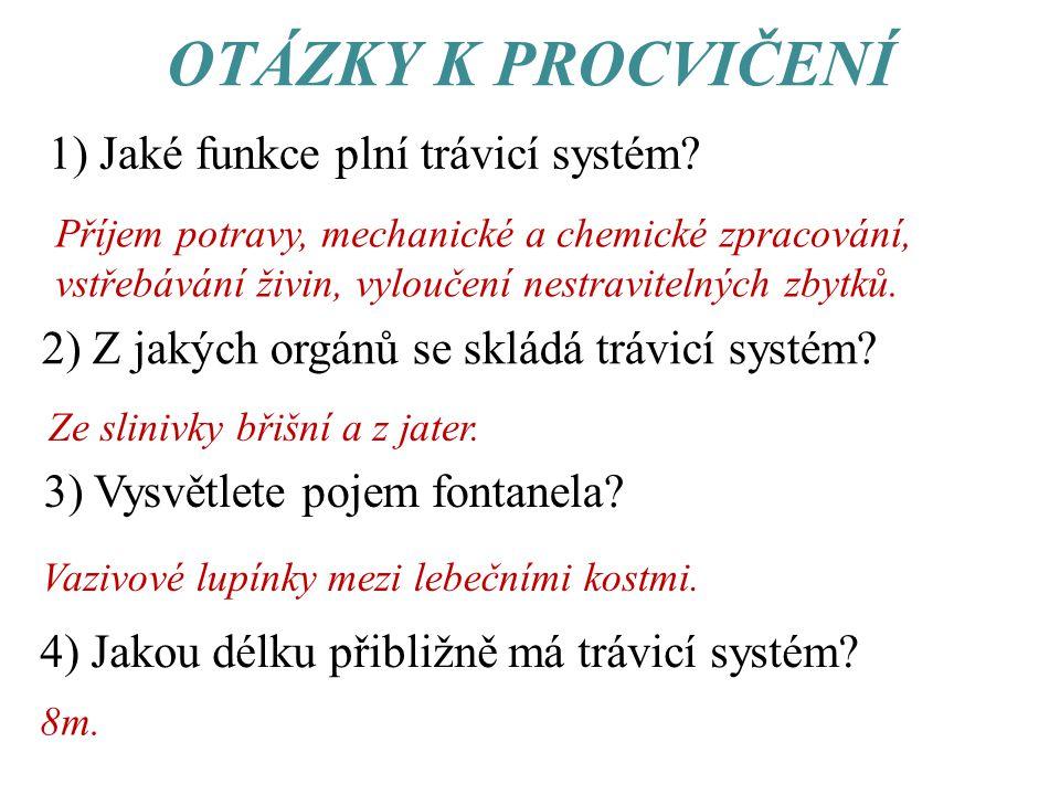 OTÁZKY K PROCVIČENÍ 1) Jaké funkce plní trávicí systém