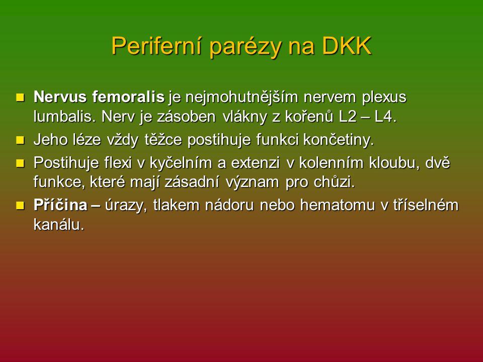 Periferní parézy na DKK