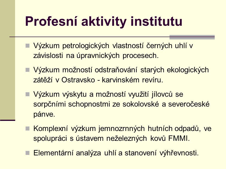 Profesní aktivity institutu