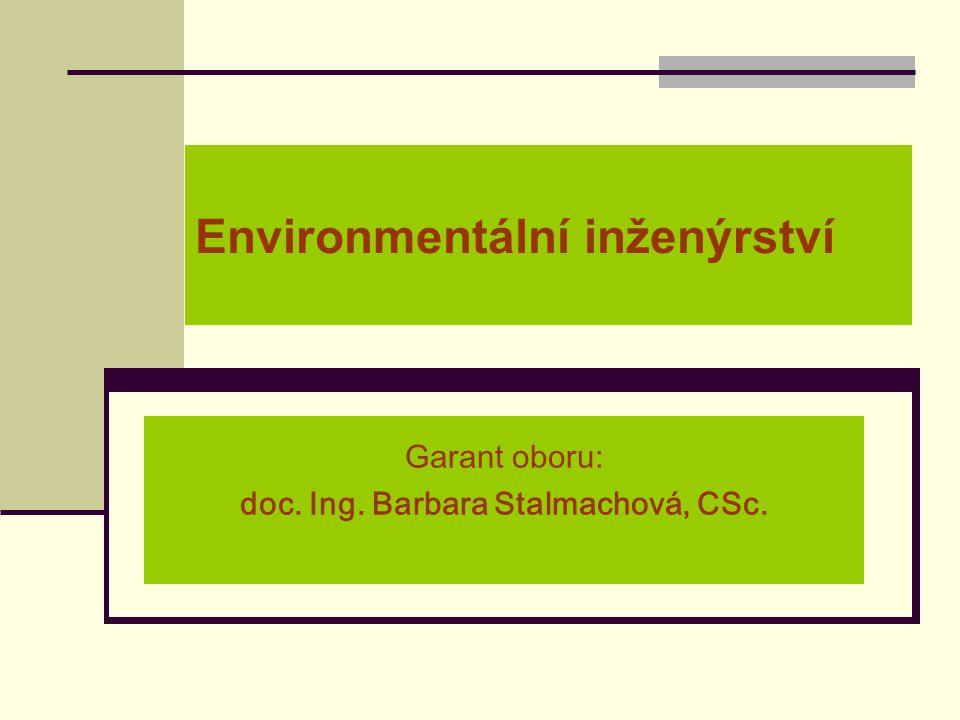 Environmentální inženýrství