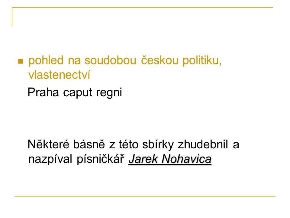 pohled na soudobou českou politiku, vlastenectví