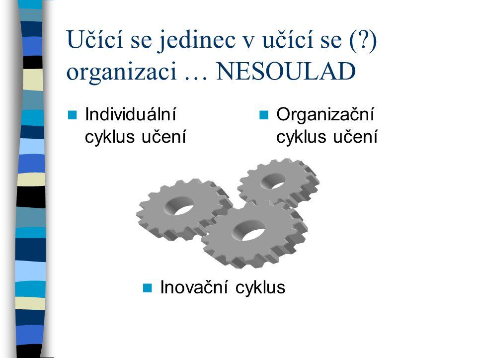 Učící se jedinec v učící se ( ) organizaci … NESOULAD