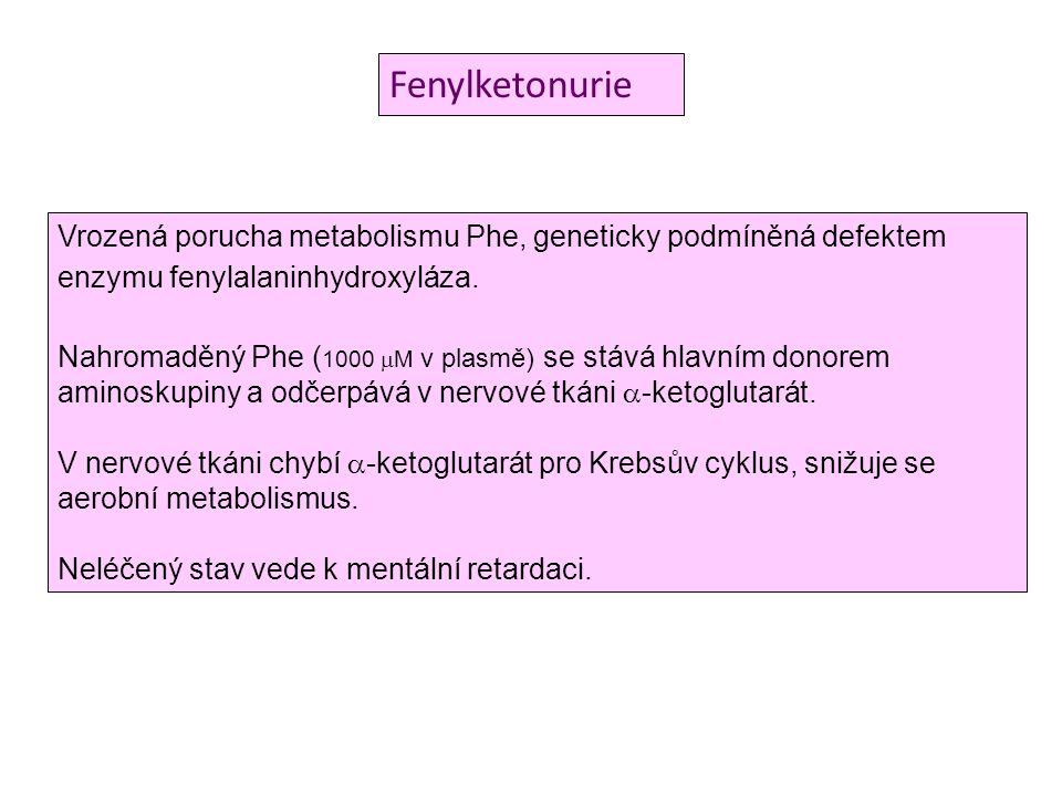 Fenylketonurie Vrozená porucha metabolismu Phe, geneticky podmíněná defektem enzymu fenylalaninhydroxyláza.