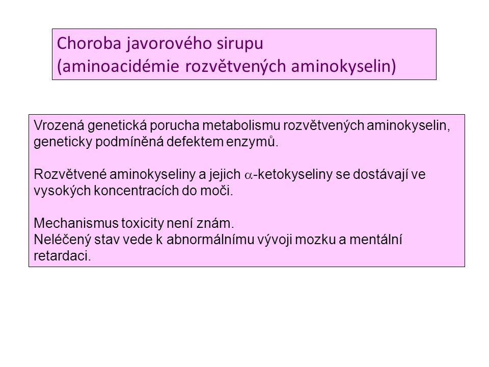 Choroba javorového sirupu (aminoacidémie rozvětvených aminokyselin)