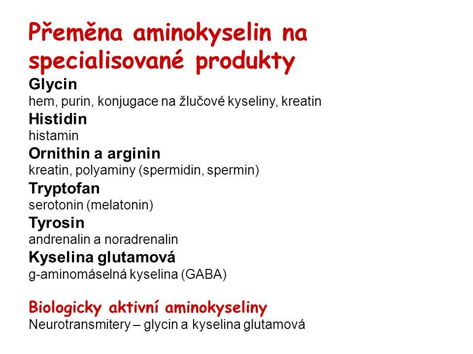 Přeměna aminokyselin na specialisované produkty