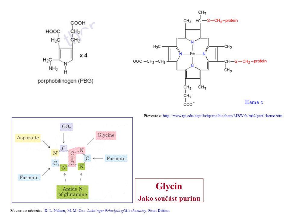 Glycin Jako součást purinu