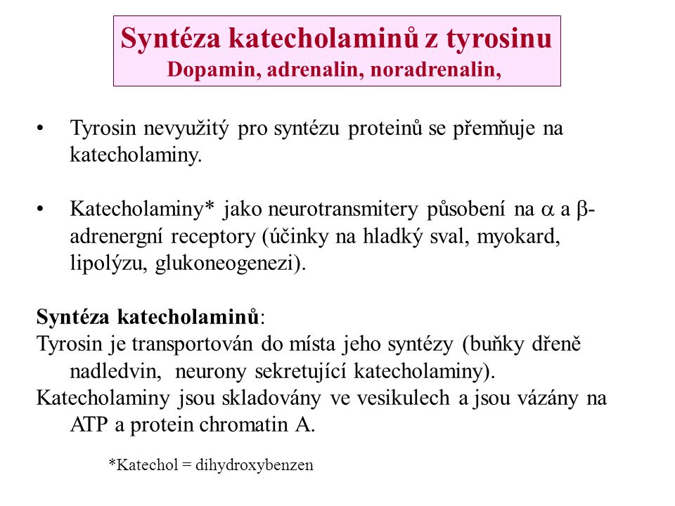 Syntéza katecholaminů z tyrosinu Dopamin, adrenalin, noradrenalin,