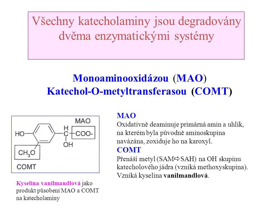Katechol-O-metyltransferasou (COMT)
