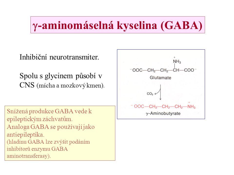g-aminomáselná kyselina (GABA)