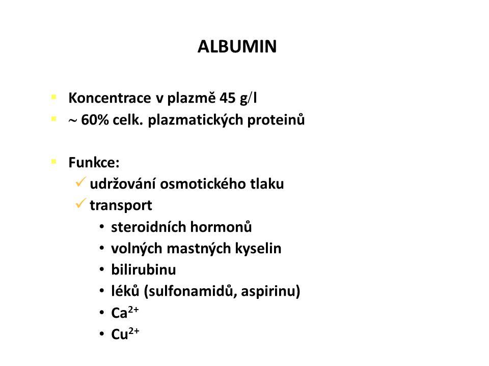 ALBUMIN Koncentrace v plazmě 45 gl  60% celk. plazmatických proteinů