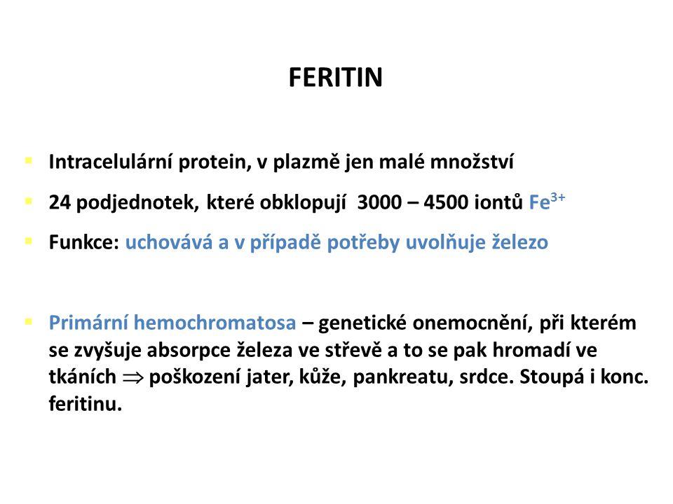 FERITIN Intracelulární protein, v plazmě jen malé množství
