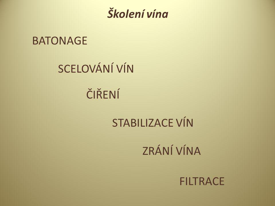 Školení vína BATONAGE SCELOVÁNÍ VÍN ČIŘENÍ STABILIZACE VÍN ZRÁNÍ VÍNA FILTRACE
