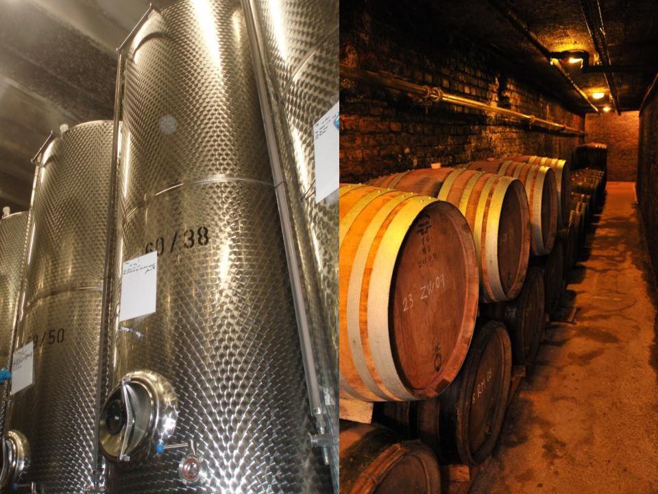 Zrání vína V této fázi se dotváří chuť a aroma vína