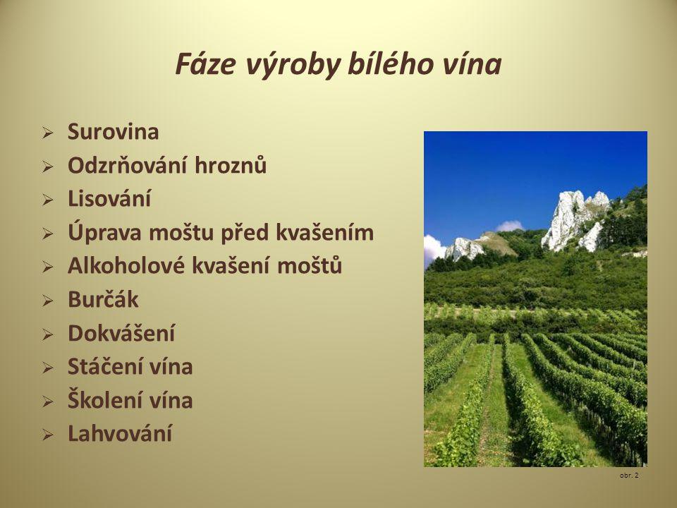 Fáze výroby bílého vína