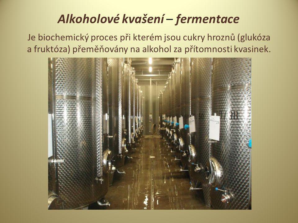 Alkoholové kvašení – fermentace
