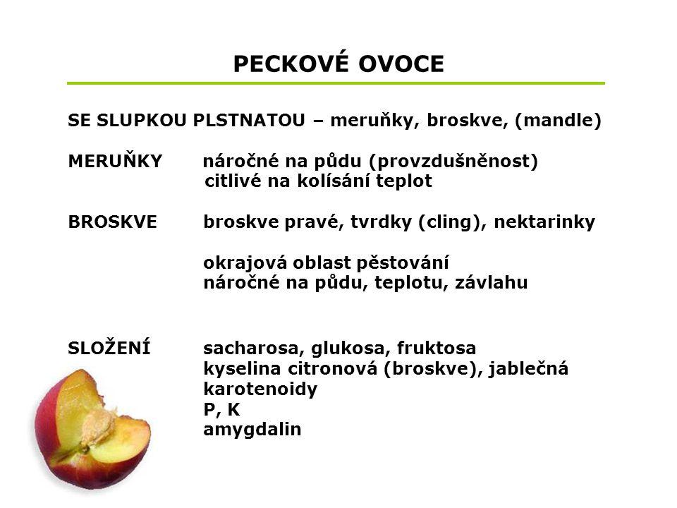 PECKOVÉ OVOCE SE SLUPKOU PLSTNATOU – meruňky, broskve, (mandle)