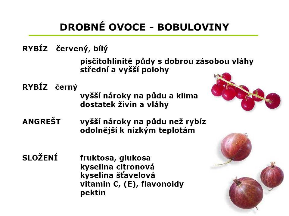 DROBNÉ OVOCE - BOBULOVINY