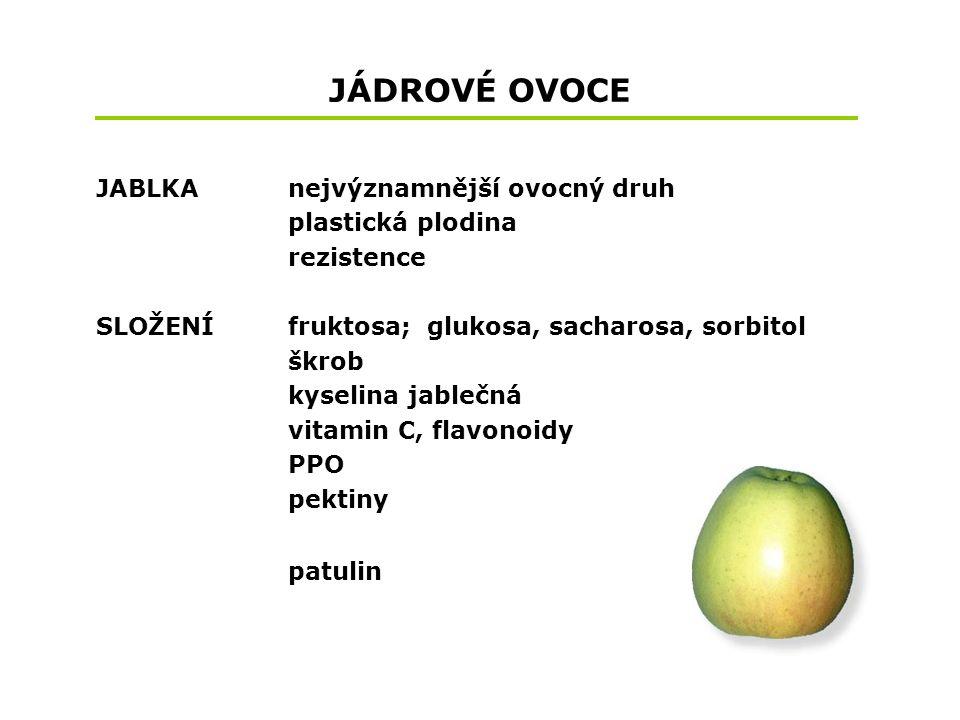 JÁDROVÉ OVOCE JABLKA nejvýznamnější ovocný druh plastická plodina