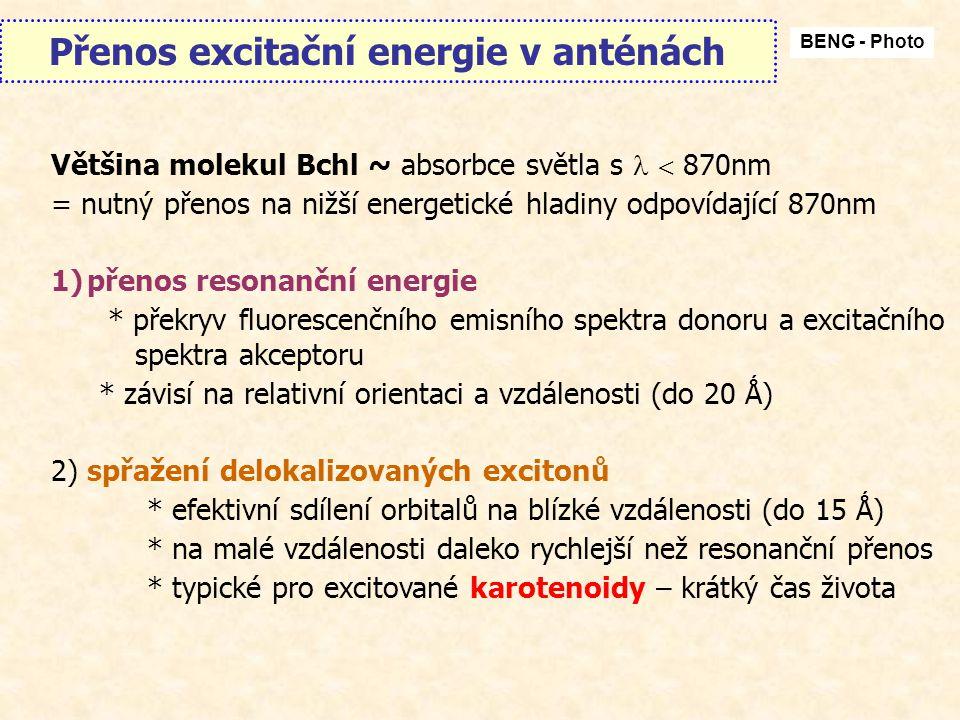 Přenos excitační energie v anténách