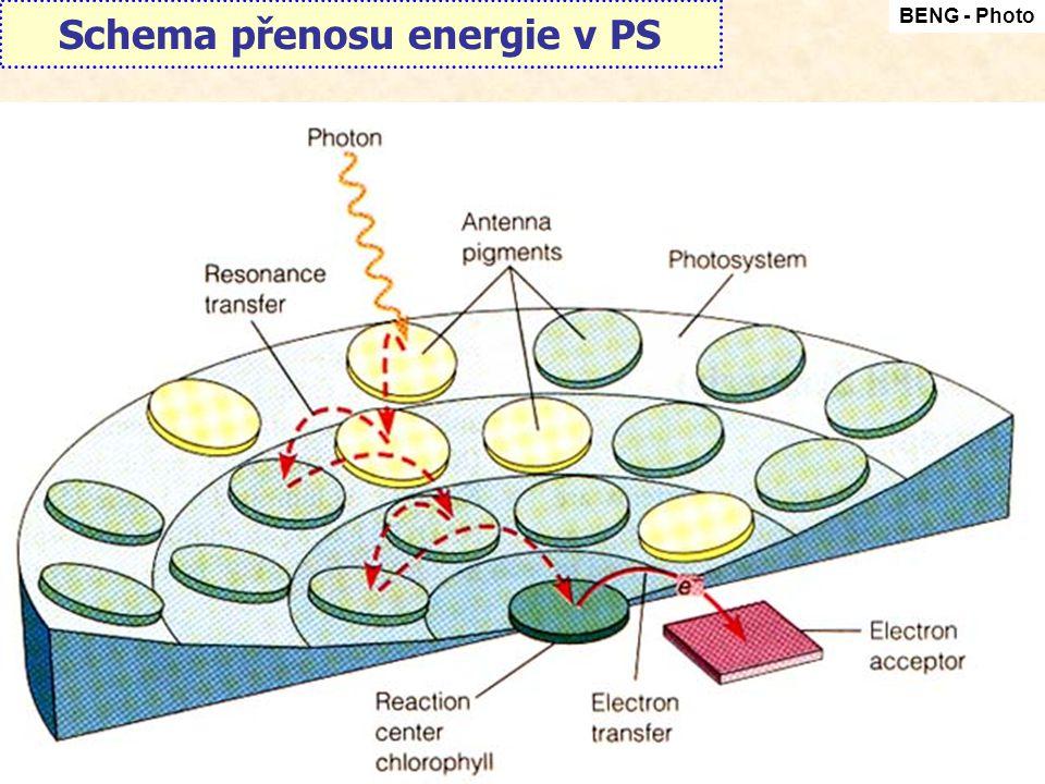 Schema přenosu energie v PS