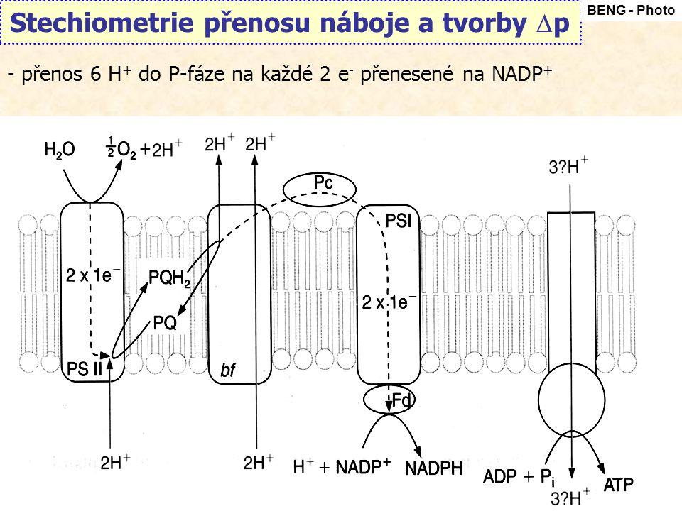 Stechiometrie přenosu náboje a tvorby p