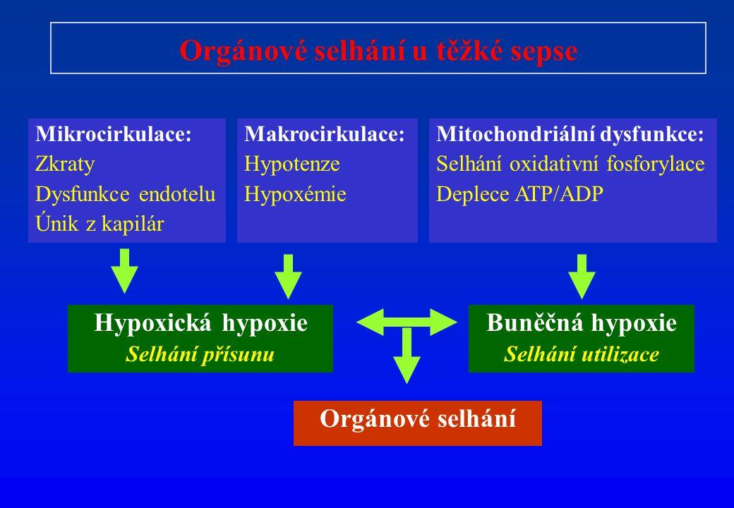 Orgánové selhání u těžké sepse