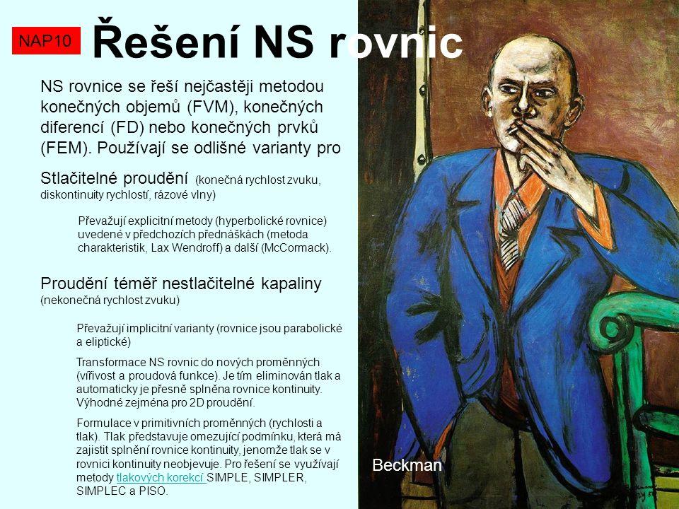 Řešení NS rovnic NAP10.