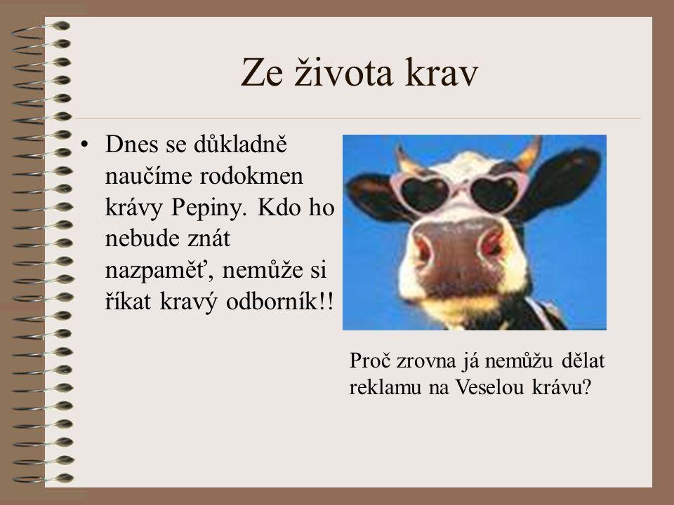 Ze života krav Dnes se důkladně naučíme rodokmen krávy Pepiny. Kdo ho nebude znát nazpaměť, nemůže si říkat kravý odborník!!
