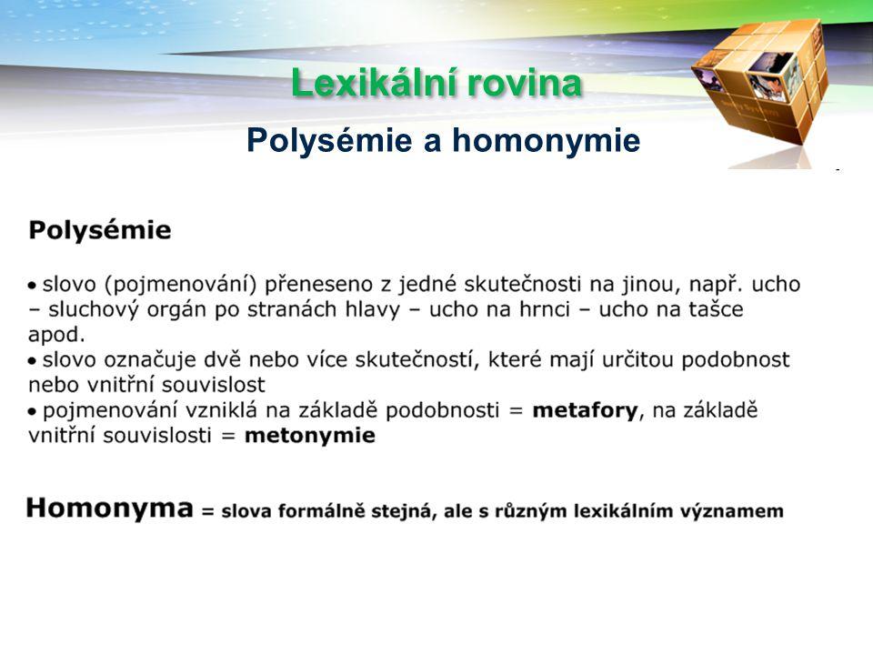 Lexikální rovina Polysémie a homonymie
