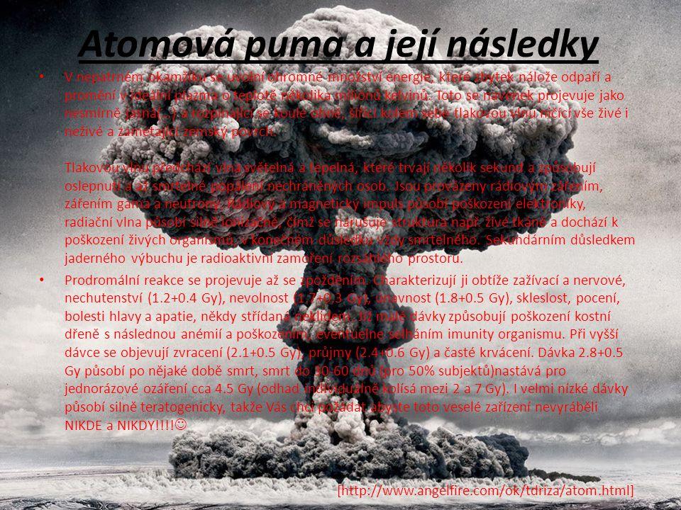 Atomová puma a její následky