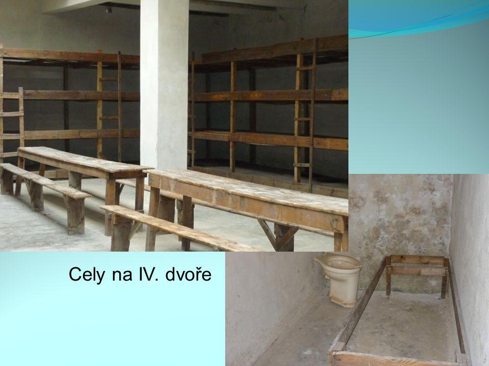 Cely na IV. dvoře