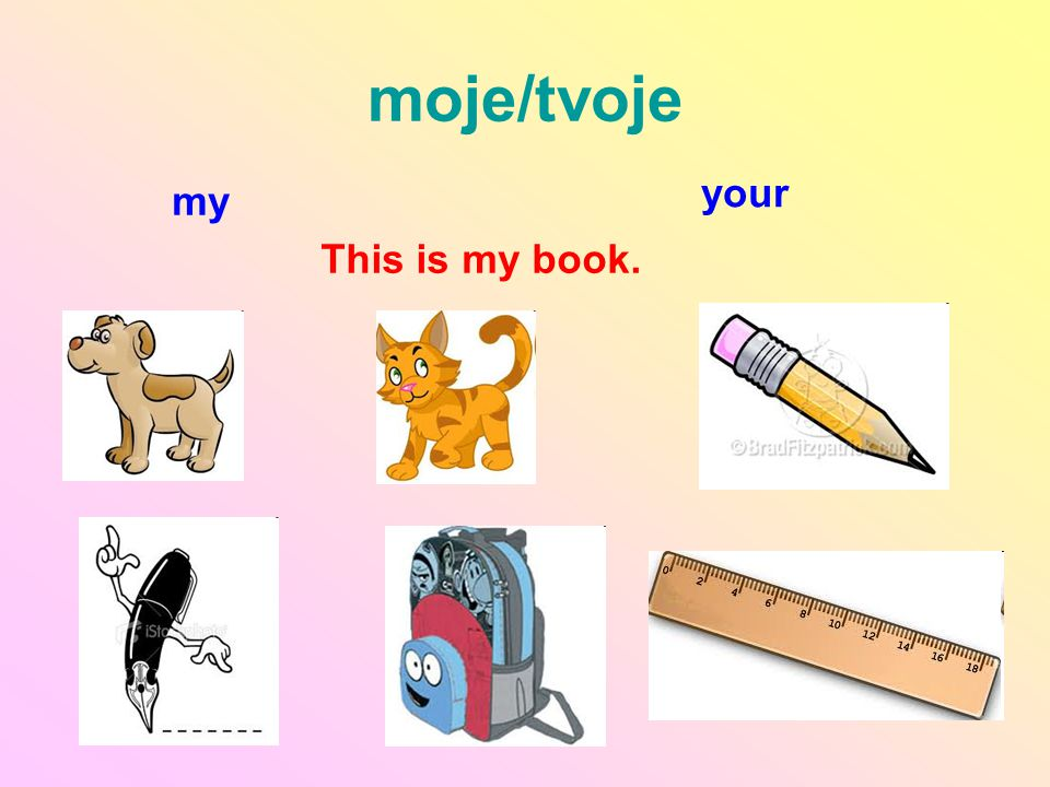 moje/tvoje your my This is my book.