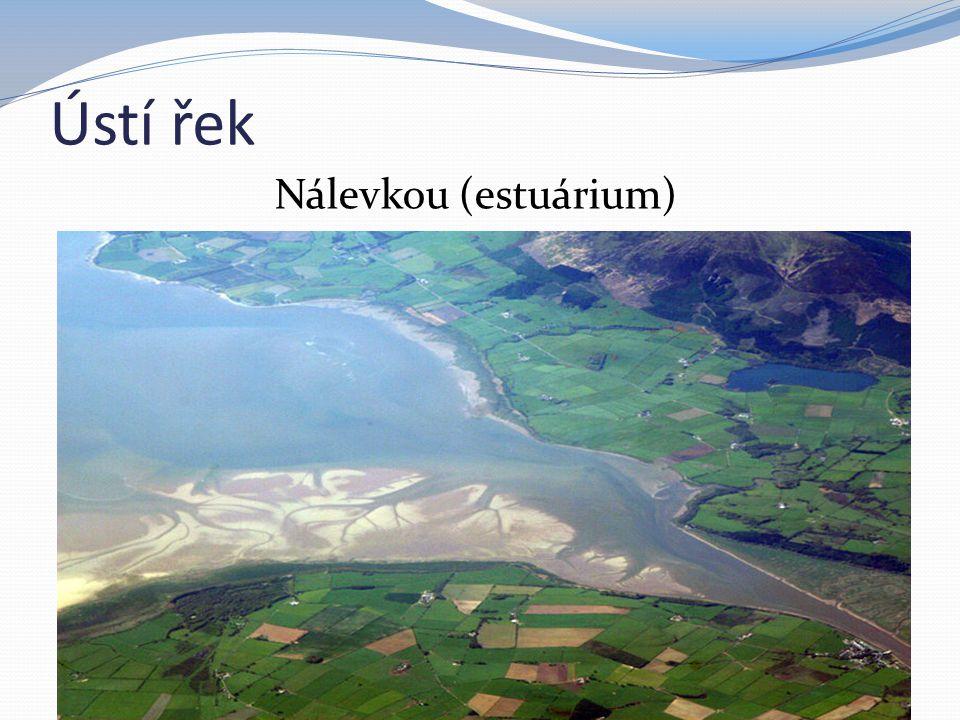 Ústí řek Nálevkou (estuárium)