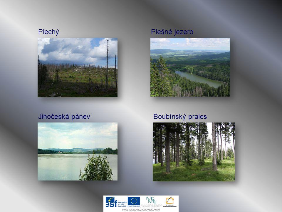 Plechý Plešné jezero Jihočeská pánev Boubínský prales