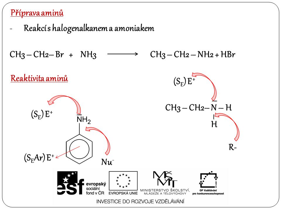 Příprava aminů Reakcí s halogenalkanem a amoniakem. CH3 – CH2– Br + NH3 CH3 – CH2 – NH2 + HBr.