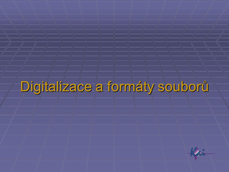 Digitalizace a formáty souborů