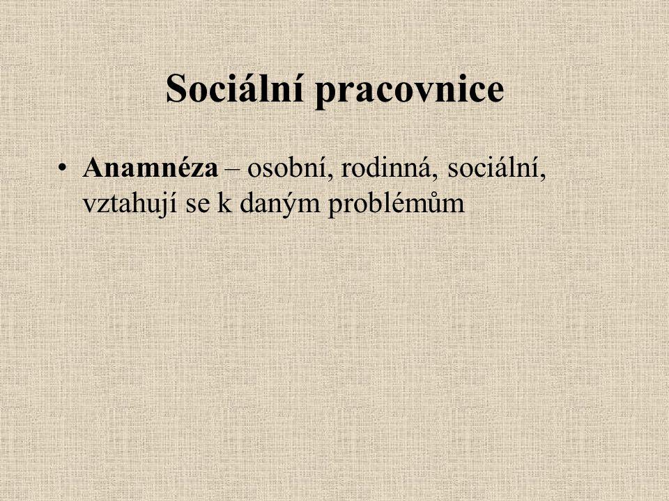 Sociální pracovnice Anamnéza – osobní, rodinná, sociální, vztahují se k daným problémům