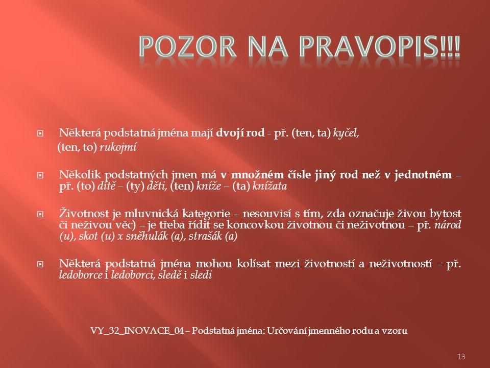 VY_32_INOVACE_04 – Podstatná jména: Určování jmenného rodu a vzoru