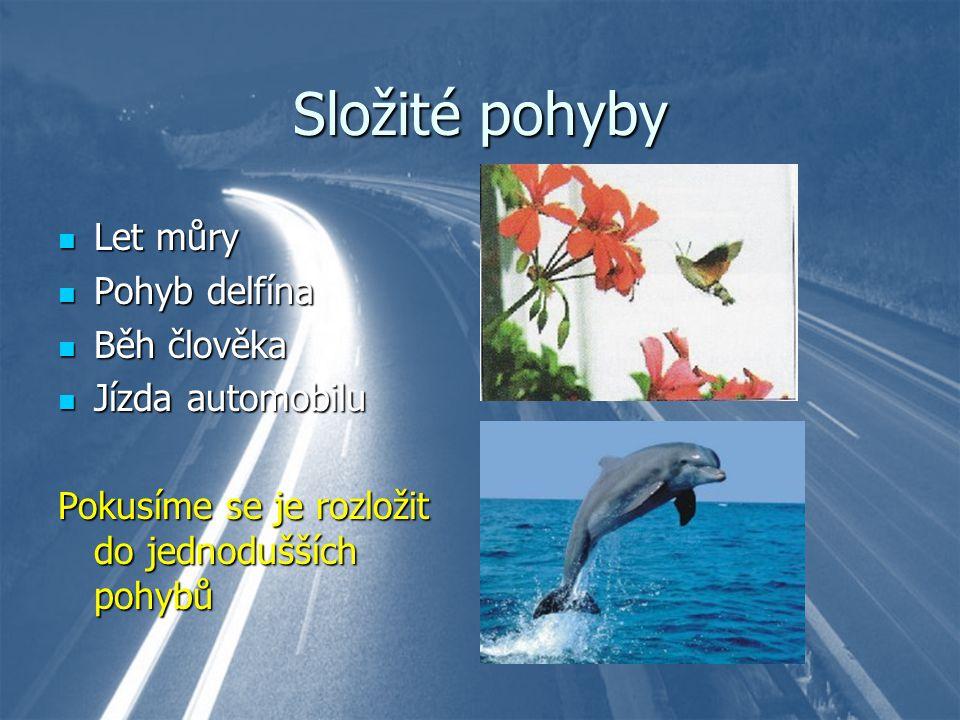 Složité pohyby Let můry Pohyb delfína Běh člověka Jízda automobilu