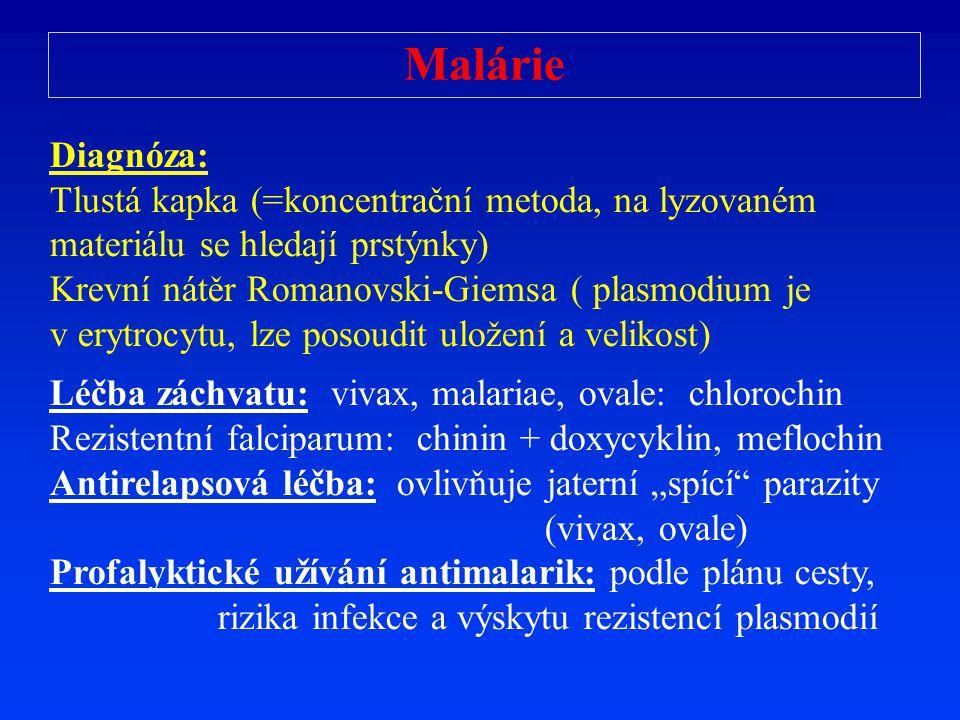 Malárie Diagnóza: Tlustá kapka (=koncentrační metoda, na lyzovaném materiálu se hledají prstýnky)