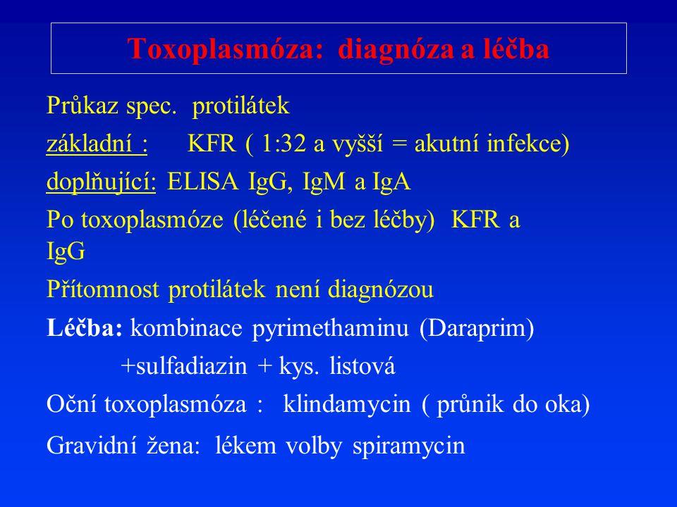 Toxoplasmóza: diagnóza a léčba
