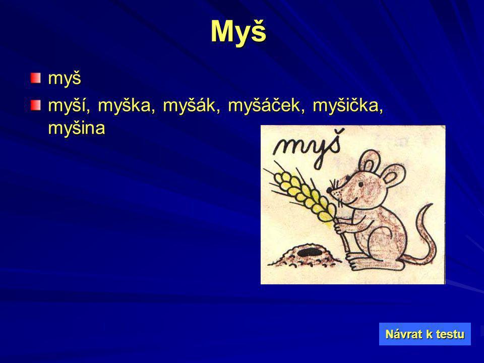 Myš myš myší, myška, myšák, myšáček, myšička, myšina Návrat k testu