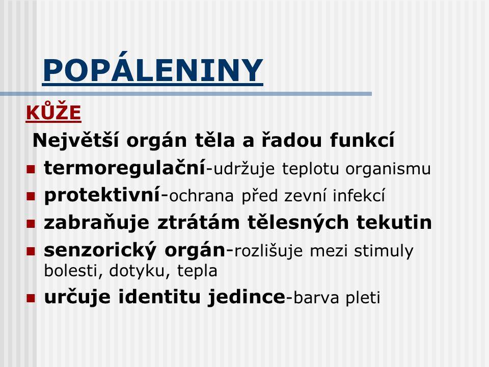 POPÁLENINY KŮŽE Největší orgán těla a řadou funkcí