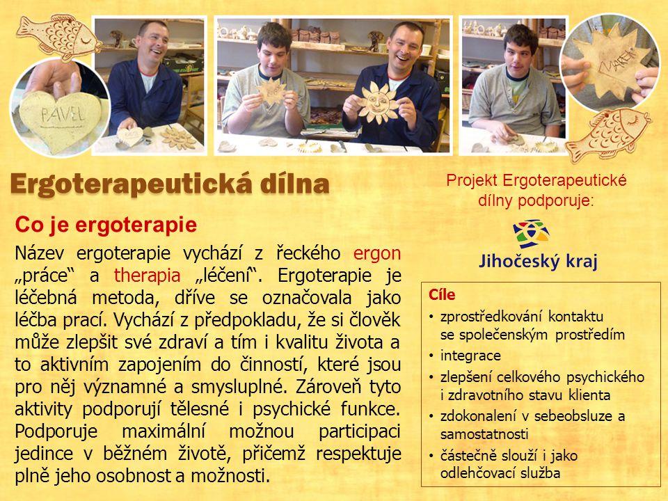 Projekt Ergoterapeutické dílny podporuje: