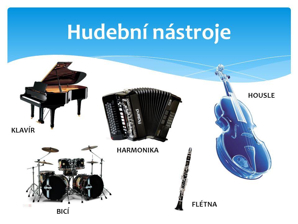 Hudební nástroje HOUSLE KLAVÍR HARMONIKA FLÉTNA BICÍ