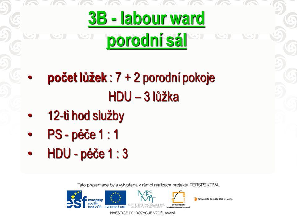 3B - labour ward porodní sál
