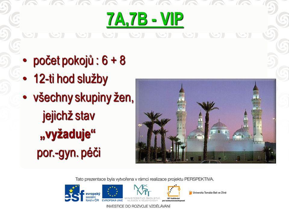 7A,7B - VIP počet pokojů : 6 + 8 12-ti hod služby všechny skupiny žen,
