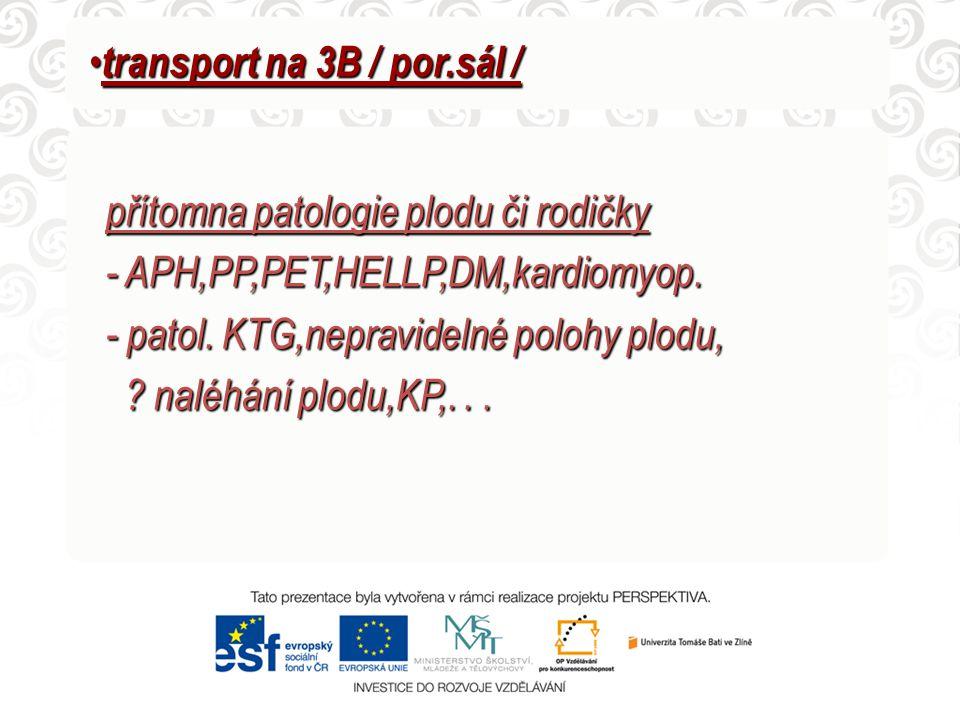 transport na 3B / por.sál /