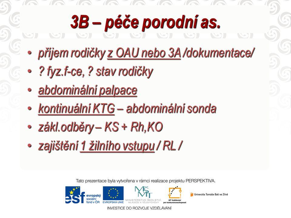 3B – péče porodní as. příjem rodičky z OAU nebo 3A /dokumentace/